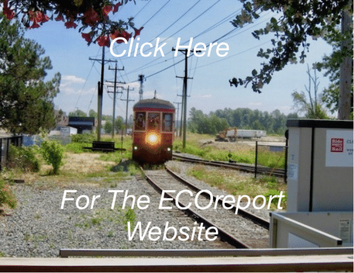 The ECOreport