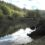 What the Dillon Creek Wetlands restoration means to Linnaea farm