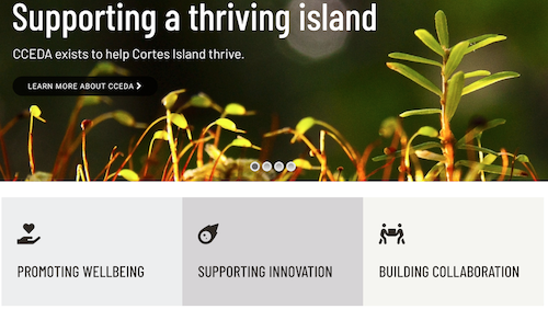 """A CCEDA add stating """"supporting a thriving island."""